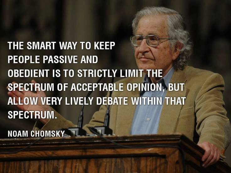 lively debat small spectrum Chomsky